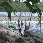 Water intake dam