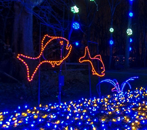 Walks of Lights Creek crop by NVRPA