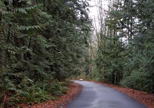 Outside Seattle, Washington