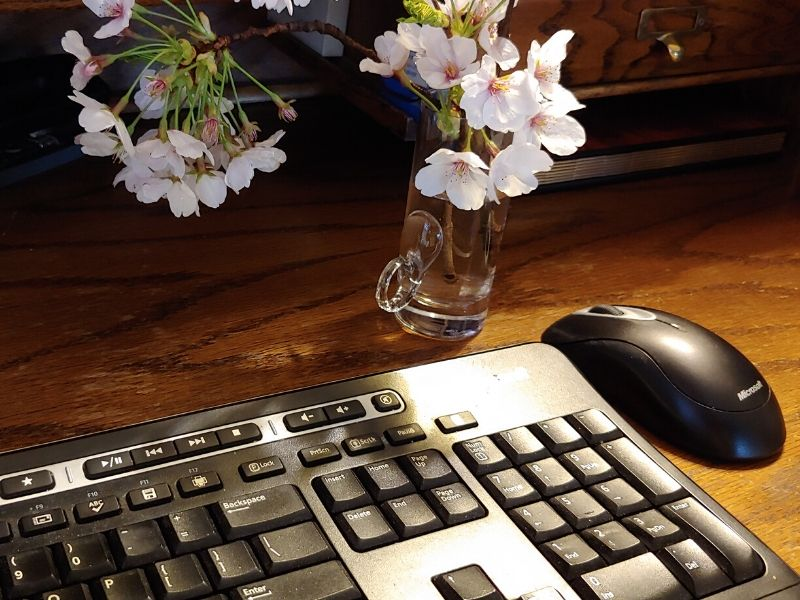 Computer keyboard on desk next to vase of cherry blossoms