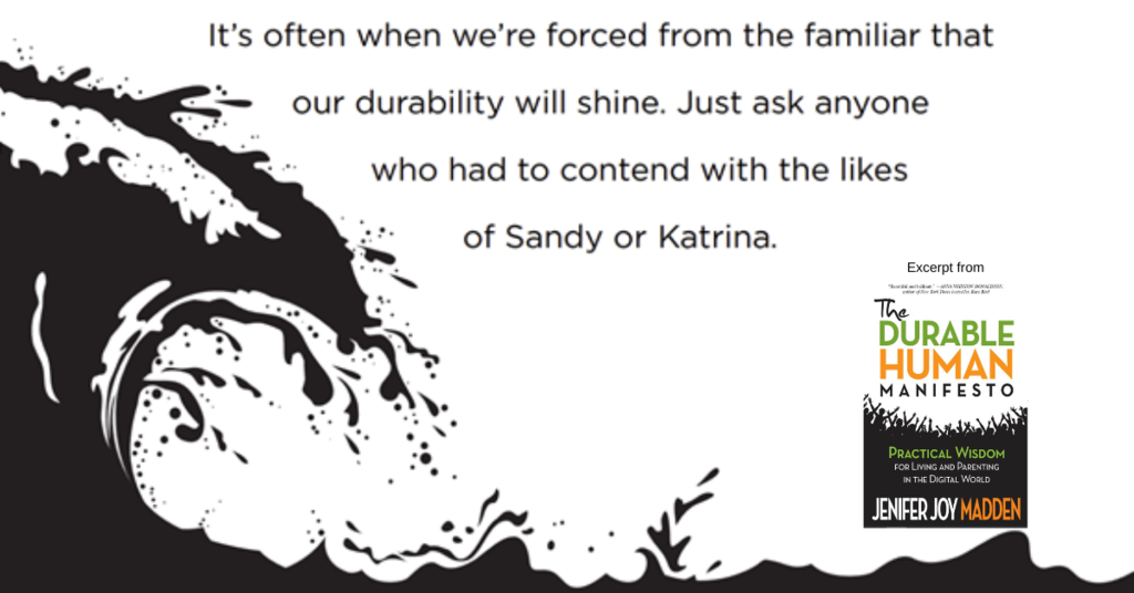 Screen shot from The Durable Human Manifesto Book about how durability can shine during adversity